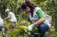 Puerto Ricans pay homage to Mother Earth and act for her protection and restoration