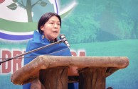 The 3rd Regional Encounter of the Children of Mother Earth in Columbia was held