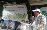 Día nacional de reforestación Panamá