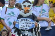 Estoy sufriendo por el daño que el ser humano le está causado a mi hábitat, no te olvides de mí, el condor