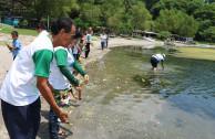 Celebration of the International Environment Day