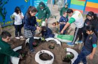 Chile reutiliza y siembra vida.