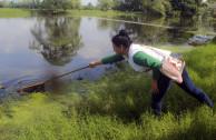 Limpieza de río