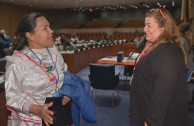 """""""Working for the Peace of Mother Earth and Indigenous Peoples"""""""