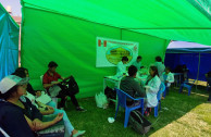 Peruvians towards a culture of voluntary, altruistic and habitual donation of safe blood.