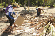Dominican Republic celebrates World Environment Day