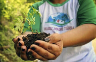 Reforestation campaign for the lake basin of Amatitlán, Guatemala.