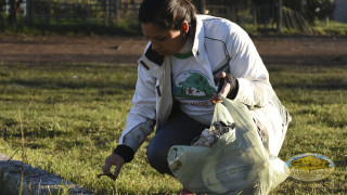 jornada ambiental