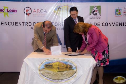 alianza internacional universitaria por la paz