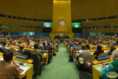 Pueblos Indígenas en la ONU