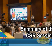 CUMIPAZ - Summary of the day: CSR Session 2018   GEAP