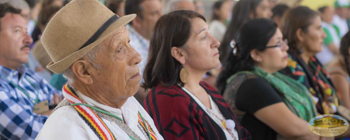 representantes de pueblos originarios