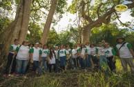Celebremos la vida con la madre tierra: jornada de arborización en Puerto Rico
