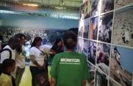 Conmemoracion Dia Internacional del Medio Ambiente en Brasil