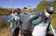Conmemoracion Dia Internacional del Medio Ambiente en Chile