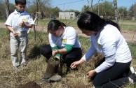 Con la siembra de plantas autóctonas en ciudad Unquillo la EMAP dio un aporte importante para la preservación de las especies en Córdoba, Argentina.