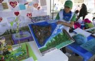 Bolivia celebra el Día Mundial de la Educación Ambiental