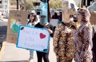 The Guardians for the Peace of Mother Earth raise their voice in Chile