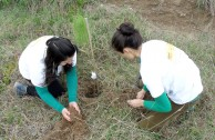 La EMAP planta 100 pinos en reserva natural