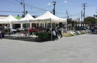 The Global Embassy of Activists for Peace participated in an Environmental Caravan, Toluca, Mexico