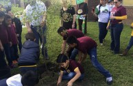 Guardianes por la Paz de la Madre Tierra en Estados Unidos rescatan áreas verdes