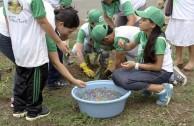 En honor a la Madre Tierra 3.586 árboles fueron sembrados en Colombia con una nueva visión ambiental