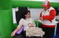 278 argentinos le dicen ¡sí! a la donación de sangre voluntaria