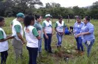 Los Guardianes por la Paz de la Madre Tierra se unen al II Gran Día Nacional de Reforestación en Panamá