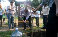 Activists for peace gather at the 5th edition of Tree Week