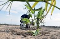 Guardianes por la Paz de la Madre Tierra resguardan espacios naturales