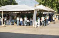 Brigadas ambientales en Plaza del Estudiante