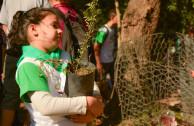 Día de los bosques, Plantación reserva San Martín - Argentina 2017