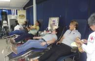 cultura de donación, sangre segura