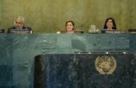 Mesa de Disertantes ONU