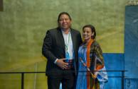 participación y representación de los pueblos indígenas