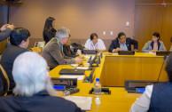 6º periodo de sesiones del Foro Permanente