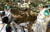 activistas limpiando bosque
