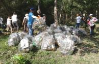 bolsas basura manglar