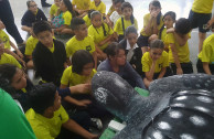 400 estudiantes de Costa Rica se comprometen con la Vida Silvestre