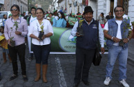 desfile ambiental