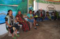 5 pueblos indígenas