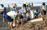 Volunteers in San Blas Beach