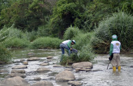 Cleaning the Pamplonita River