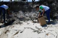 Día Mundial Playas Rios