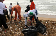 Día Mundial Playas