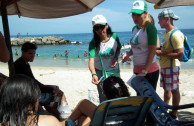 Volunteers collected more than 1.3 tons of garbage on beaches