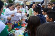 environmental fair