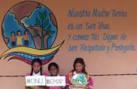 Participación ciudadana: Venezuela se une en favor del medio ambiente