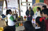 The GEAP on World Environment Day creating awareness among Bolivians.