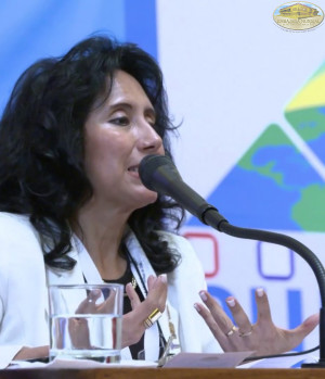 Diplomatic, Political and Parliamentary Session CUMIPAZ 2015
